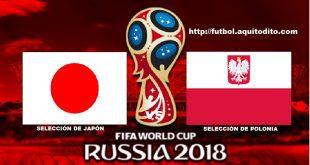 Japón vs Polonia EN VIVO