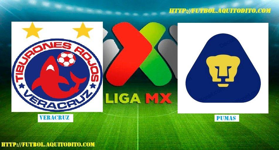 Veracruz vs Pumas EN VIVO