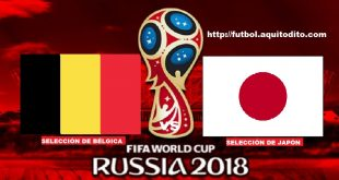 Bélgica vs Japón EN VIVO