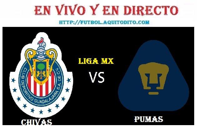 Chivas vs Pumas EN VIVO