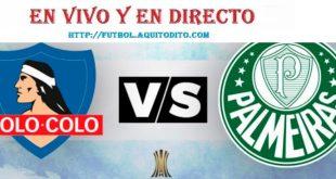 Palmeiras vs Colo Colo EN VIVO