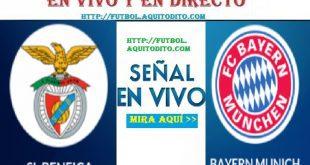 Bayern Múnich vs. Benfica EN VIVO