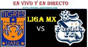 Tigres UANL vs Puebla EN VIVO