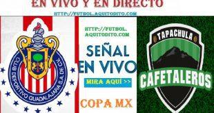 Chivas del Guadalajara vs Cafetaleros EN VIVO