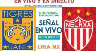Tigres UANL vs Necaxa EN VIVO